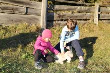 Stroking the lambs – close to the animals